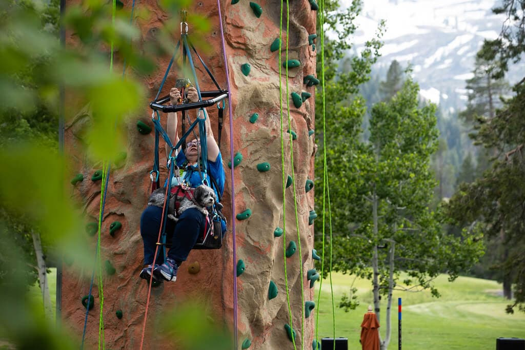 Woman using adaptive climbing equipment on rock climbing wall.
